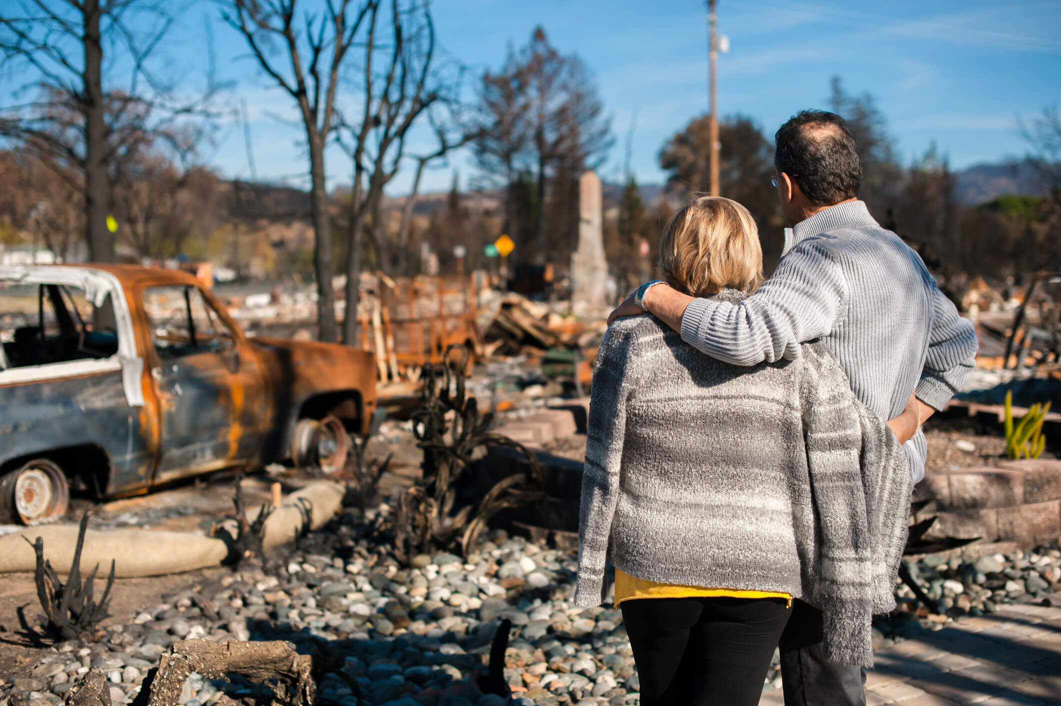 disaster relief options